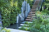Living green vertical wall, stepping stones across pond to steps