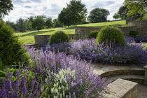 Nepeta racemosa 'Walker's Low' border edging, Taxus baccata domes, stone walls, Salvia x sylvestris 'Schneehügel', Salvia x sylvestris 'Mainacht'