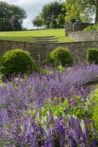 Sunken garden, Nepeta racemosa 'Walker's Low' border edging, Taxus baccata domes, Cirsium rivulare 'Atropurpureum', Salvia x sylvestris 'Schneehügel', Salvia verticillata 'Purple Rain', stone walls