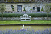 Sunken garden, wooden Lutyens bench by pond, Lavandula angustifolia 'Princess Blue' in raised bed, topiary in terracotta containers, Malus 'Evereste' standards