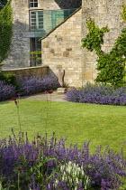 Nepeta racemosa 'Walker's Low' border edging, stone wall, Cirsium rivulare 'Atropurpureum', Salvia x sylvestris 'Schneehügel'