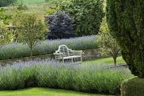 Sunken garden, wooden Lutyens bench, Lavandula angustifolia 'Princess Blue' in raised bed, Malus 'Evereste' standards