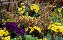 Rustic twig chicken, Easter decoration, primroses