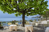 Table and chairs on mediterranean terrace under Horse chestnut tree