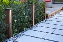 Outdoor lighting alongside stepping stone paving, pebbles, Tulipa 'Spring Green', steel path edging, Myrtus communis hedge