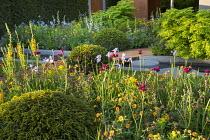 Verbascum 'Cotswold Queen', Geum 'Totally Tangerine', large mounds of clipped Taxus baccata, Cirsium rivulare 'Atropurpureum', Iris 'Tamberg', Euonymus alatus 'Compactus'
