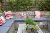 Built-in scaffolding boards benches with cushions around reclaimed wooden table, herbs in pots, Phyllostachys nigra