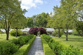 Path leading to fountain in walled garden, greenhouse, acer
