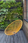 Living green wall in contemporary town garden, contemporary orange chair on decking