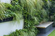 Living green wall with built-in bench, Asplenium scolopendrium, Polypodium vulgare, Carex oshimensis 'Evergold', Pachysandra terminalis