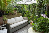 Outdoor sofa with cushions under parasol on decking, box topiary