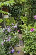View along path to pond, Phlox paniculata 'Blue Paradise', Dahlia 'Cornish Ruby', Actinidia deliciosa
