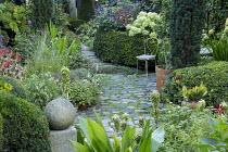 Chair on stone patio in small urban garden, Eucomis bicolor in pots, yew hedge, Hydrangea arborescens 'Annabelle'