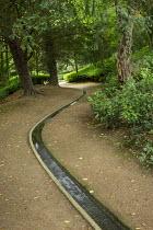 Rill through woodland