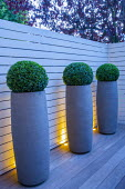 Box balls in tall contemporary containers against white painted fence