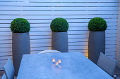 Table and chairs in small courtyard garden, white painted wooden fence, box balls in tall contemporary containers, candles