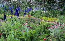 Informal herb and cutting garden, Lychnis coronaria, delphiniums, geraniums