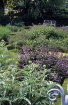View across box-edged herb garden to white bench, artichokes, comfrey, purple sage
