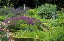 Formal herb garden with box edging, roses, metal obelisks, artichokes