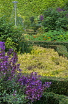 Herb garden with box edging, nasturiums, thyme
