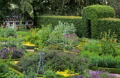 View of herb garden with box edging, clipped arch in hedge