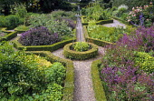 Overview of formal herb garden with box hedging, Purple sage