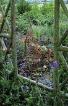 View through summerhouse window, sweet peas, terracotta cloches, willow wigwam, artichokes