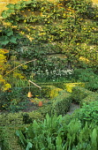 Vegetable garden, box edging, espaliered apple tree against wall, suspended flowerpot bird scarer