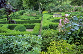 Box parterre, borders with roses