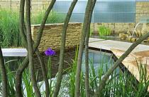 Iris ensata, multi-stemmed Amelanchier lamrackii, dry stone wall, limestone path, decking, gabions