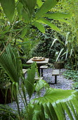 Bamboos, palm, table and chairs, slate chippings