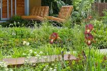 Chairs on terrace, Iris 'Kent Pride', Geum coccineum 'Cooky', Aquilegia vulgaris var. stellata 'White Barlow' (Barlow Series), Deschampsia cespitosa, Baptisia x variicolor 'Twilite' Prairieblues