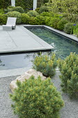 Formal pool with slate paddlestones, chair on grey Yorkstone paving, basalt granite gravel chippings, cloud-pruned Pinus sylvestris 'Watereri' and Pinus sylvestris