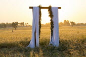 White fabric drapes over arch looking towards wheat field at dawn