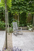 Wooden rocking chair on travertine patio edged with gravel within pleached hornbeam enclosure, Lavandula angustifolia 'Hidcote', yew columns and Hydrangea arborescens 'Annabelle' in raised bed