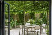 View from inside to table and chairs on travertine patio edged with gravel within pleached hornbeam enclosure, Lavandula angustifolia 'Hidcote', yew columns, Hydrangea arborescens 'Annabelle'