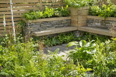 Built-in wooden benches by dry-stone wall, ferns in raised bed, hosta, Dryopteris filix-mas, Astrantia major 'Alba' and Deschampsia cespitosa