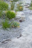Rock garden, Bulbine frutescens 'Hallmark', footprint sculptures