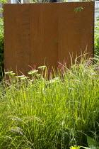 Cor-ten steel wall, Anemanthele lessoniana syn. Stipa arundinacea, Persicaria amplexicaulis, Selinum wallichianum