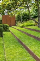 Grass steps with cor-ten steel risers under magnolia, cor-ten steel wall