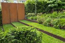 Grass steps with cor-ten steel risers, cor-ten steel wall, yew hedge, Persicaria amplexicaulis, Geranium 'Johnson's Blue', euphorbia