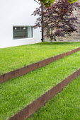 Grass steps with cor-ten steel risers, Acer palmatum against brick wall