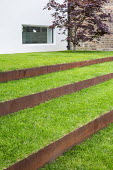 Grass steps with cor-ten steel risers, Acer palmatum
