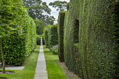 View along path to stone obelisk, clipped yew hedge