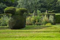 Yew topiary on terraced lawn, dahlia, hollyhocks, fennel