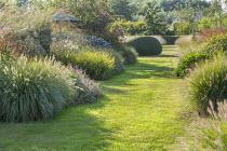 Grass path, Pennisetum alopecuroides 'Gelbstiel', Solidago caesia, Persicaria amplexicaulis 'Firedance', Geranium 'Anne Thomson', Molinia caerulea subsp. arundinacea 'Transparent'