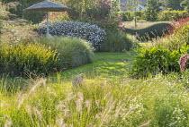 Grass path, Pennisetum alopecuroides 'Gelbstiel', Solidago caesia, Persicaria amplexicaulis 'Firedance', Knautia godetii, Kalimeris Incisa 'Charlotte