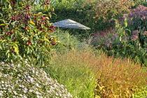 Kalimeris incisa 'Charlotte', Eupatorium maculatum (Atropurpureum Group) 'Riesenschirm', Persicaria orientalis, malus, Panicum virgatum 'Shenandoah'