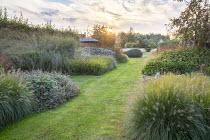 Grass path, Pennisetum alopecuroides 'Gelbstiel', Geranium 'Anne Thomson', Solidago caesia, Molinia caerulea subsp. arundinacea 'Transparent', Persicaria amplexicaulis 'Firedance'