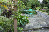 Green metal table and chairs on crazy paving patio, arum in container, stone raised beds, Trachelospermum jasminoides climbing on wooden post